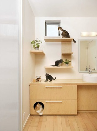 Japanese-cat-house-2