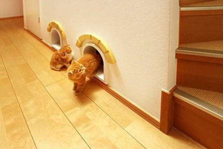 Jpanese-cat-house-3jpg-443x297
