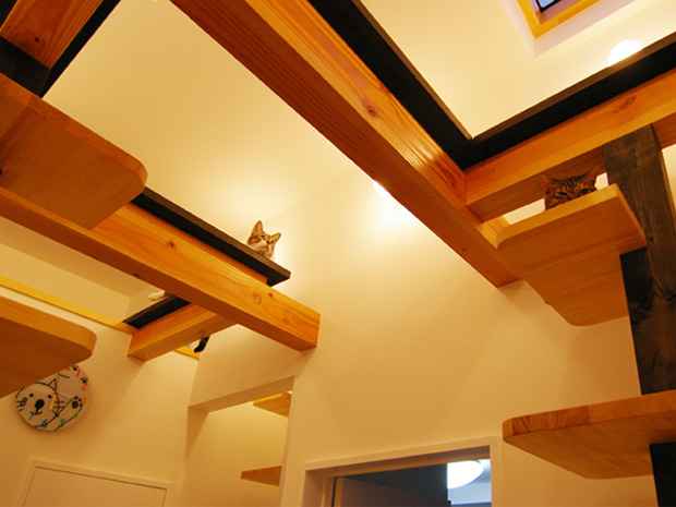 cats-house-japan-1