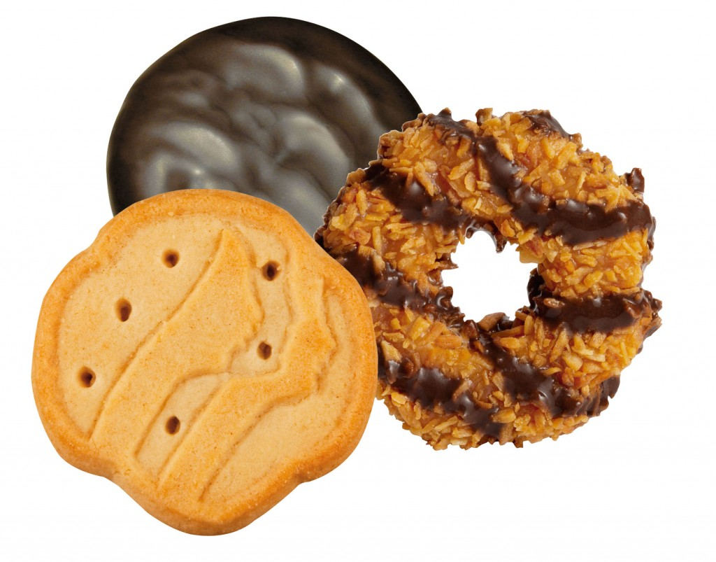 diy girl scout cookies   just amorous